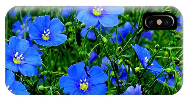 Dainty Blue Flax Linum IPhone Case