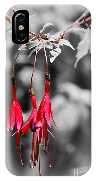 Dainty Fuchsias By Kaye Menner  IPhone Case