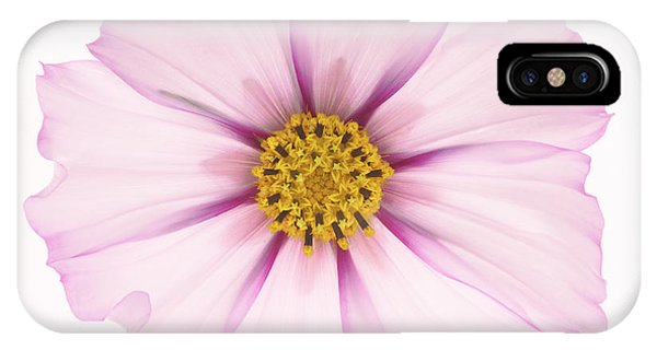 Dainty Pink Cosmos On White Background. Phone Case by Rosemary Calvert