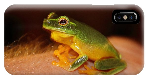IPhone Case featuring the photograph Dainty Tree Frog  by Debbie Cundy