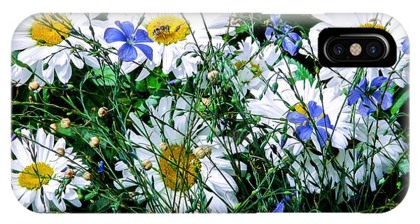 Daisies With Blue Flax And Bee IPhone Case