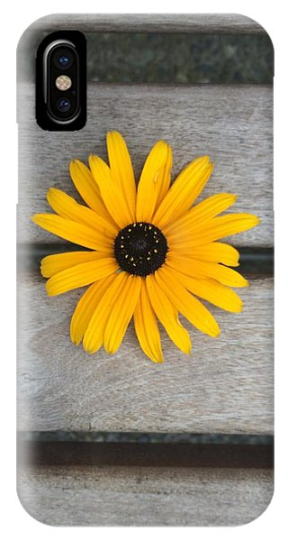 Daisy 3 IPhone Case