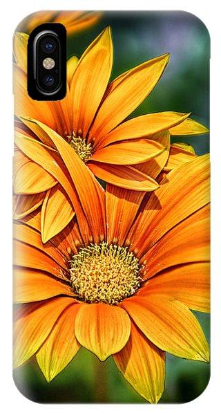 Daisy Blend IPhone Case