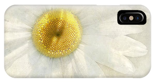 Daisy Divine IPhone Case