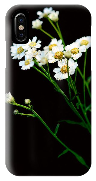 Daisy Flower Bouquet  IPhone Case