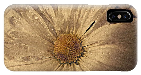 Daisy Mae IPhone Case