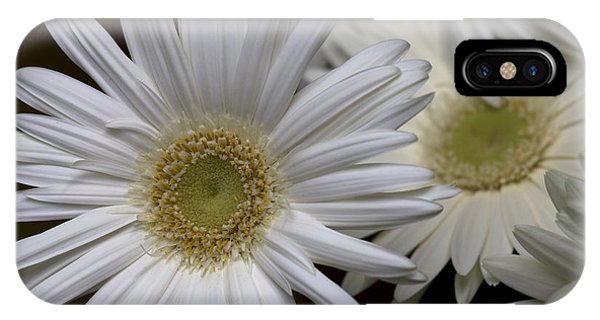 Daisy Photo IPhone Case