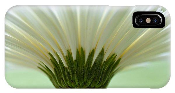 Daisy Sweetness IPhone Case