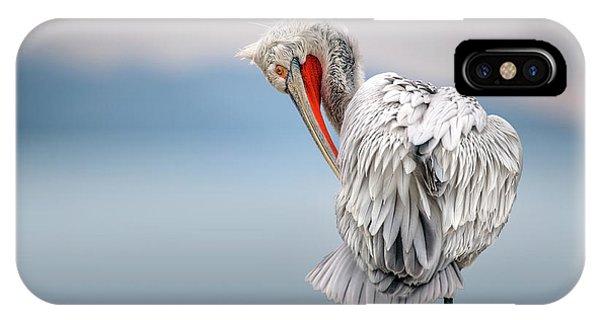 Pelican iPhone Case - Dalmatian Pelican At Dawn by Xavier Ortega
