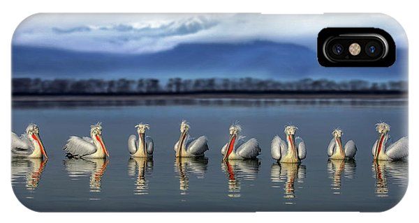 Dalmatian Pelicans Meeting Phone Case by Xavier Ortega
