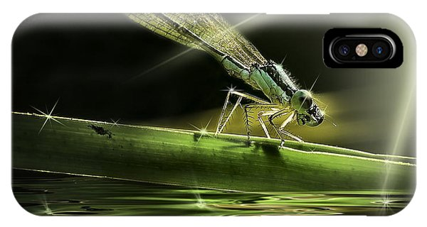 Damsel Dragon Fly  With Sparkling Reflection IPhone Case