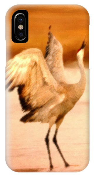 Dance Of The Crane IPhone Case