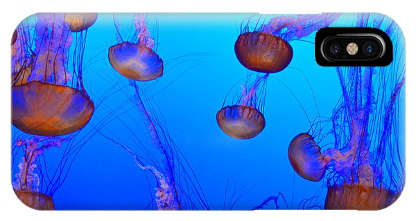 Dance Of The Jellyfish IPhone Case