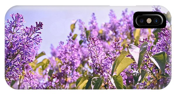 Dance Of The Lilacs IPhone Case