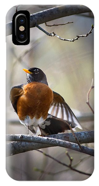 Dance Of The Robin IPhone Case