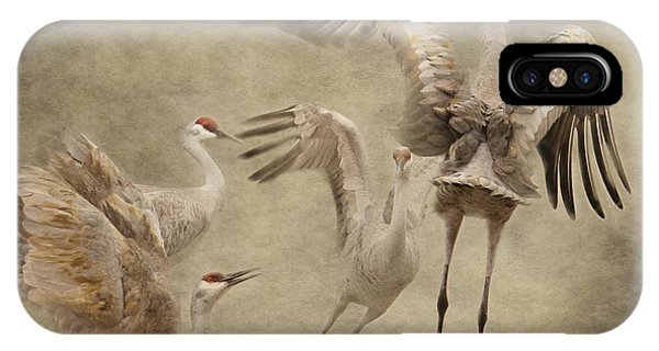Dance Of The Sandhill Crane IPhone Case