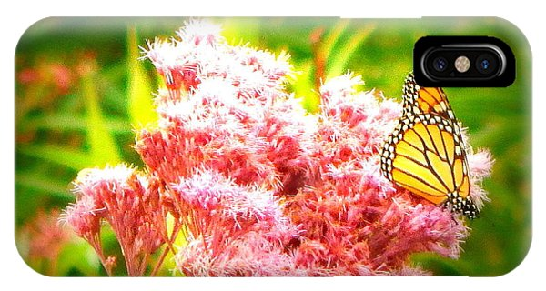 Dancing Butterfly IPhone Case
