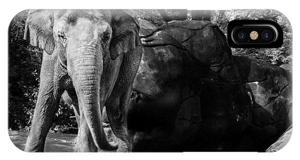 Dancing Elephant IPhone Case
