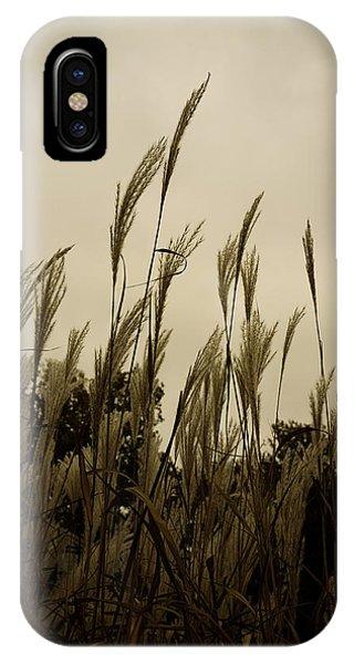 Dancing Grass IPhone Case