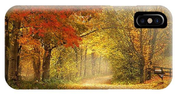 Leaf iPhone Case - Dancing Leaves by Magda  Bognar