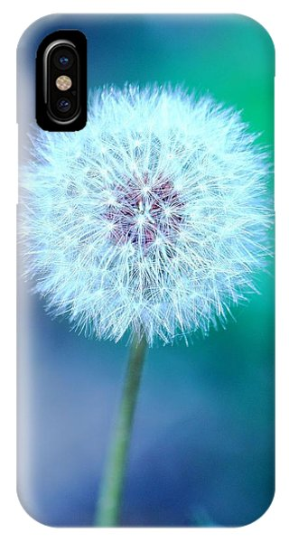 Dandelion Blue IPhone Case