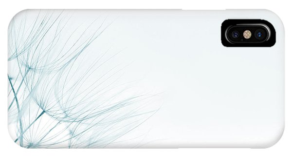 Dandelion Detail Against White Background IPhone Case