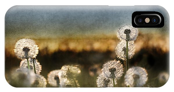 Dandelion Dusk IPhone Case