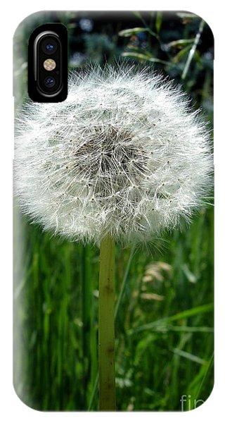 Dandelion Fluff IPhone Case