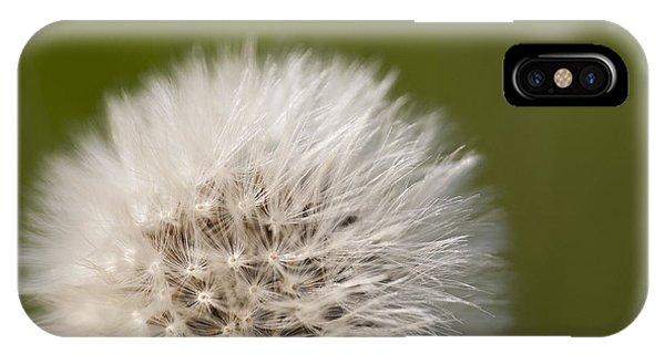 Nikon iPhone Case - Dandelion by Michael Ver Sprill
