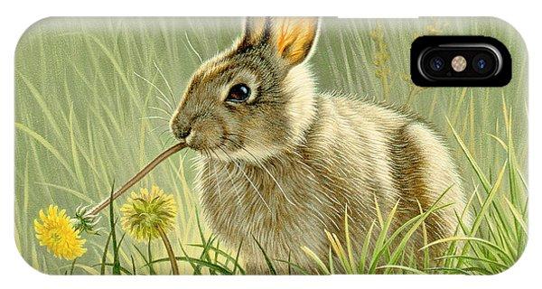 Rabbit iPhone Case - Dandi-nibbler by Paul Krapf