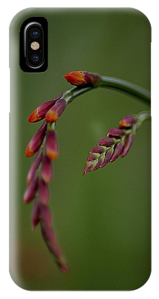 Dangling IPhone Case