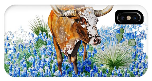 Da102 Longhorn And Bluebonnets Daniel Adams IPhone Case