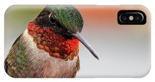 Da162 Hummingbird Thinking By Daniel Adams IPhone Case