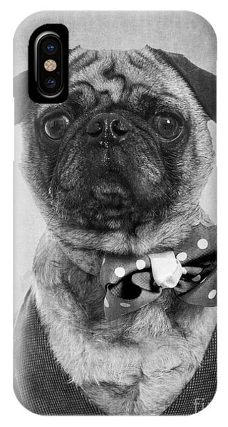 Pug iPhone X Case - Dapper Dog by Edward Fielding