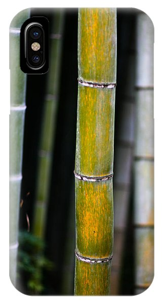 IPhone Case featuring the photograph Dark Bamboo by Brad Brizek