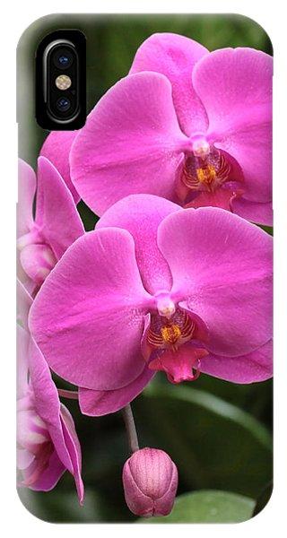 Dark Pink Moth Orchids IPhone Case