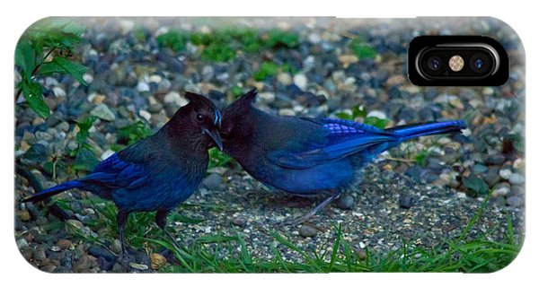 Darling I Have To Tell You A Secret-sweet Stellar Jay Couple IPhone Case