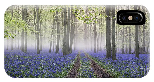 Dawn Bluebell Wood Panoramic Phone Case by Tim Gainey
