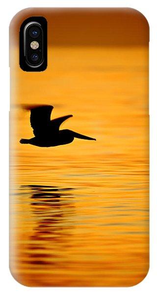 Dawn Pelican  C6j8211 IPhone Case