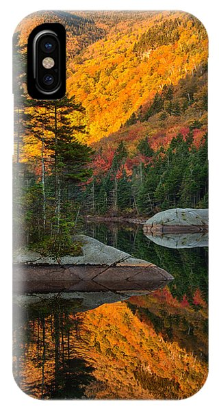 Dawns Foliage Reflection IPhone Case