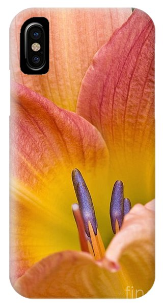 Day Lily  3 IPhone Case