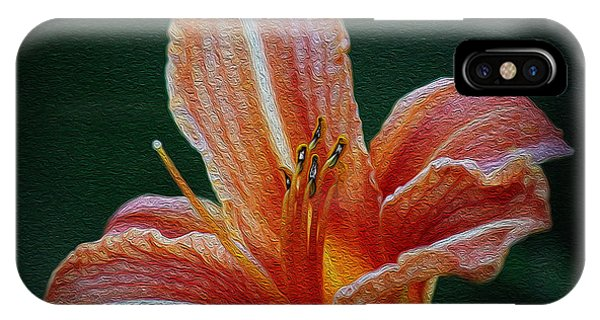 Day Lily Rapture IPhone Case