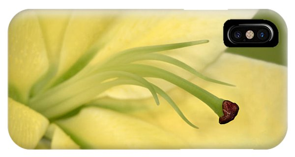 Lillie iPhone Case - Day Lily by Susan Candelario