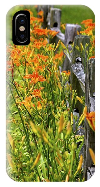Daylilies Along Fence IPhone Case