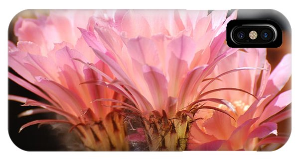 Daylilies IPhone Case