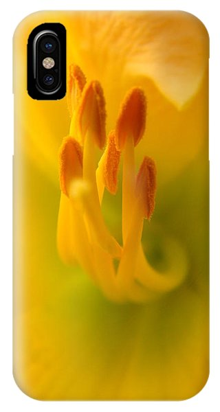 Tickle Your Fancy IPhone Case