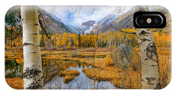 Dazzling Fall Foliage IPhone Case