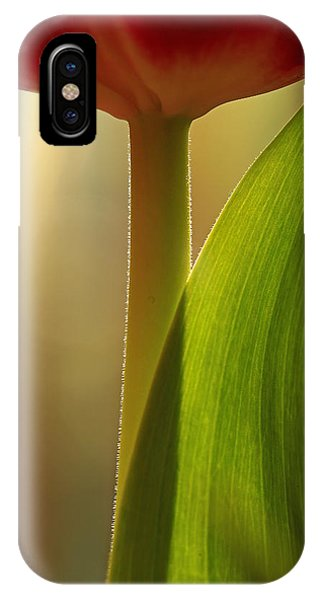 Vertical Tulip IPhone Case