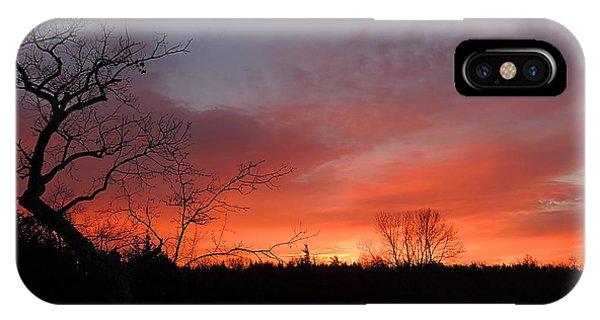 Dead Tree Sunrise IPhone Case