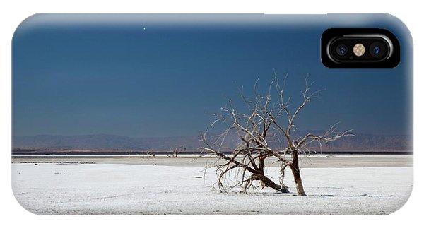 Dead Trees On Salt Flat IPhone Case
